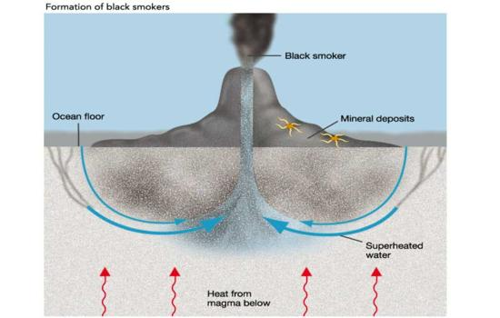 blacksmoker_550x3501