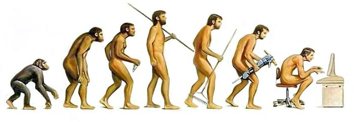 evolution-288-700