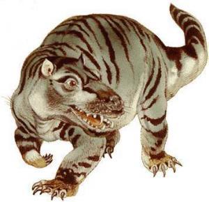 Mammal-Like-Reptiles