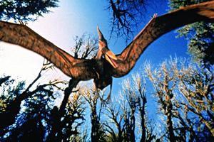 Uçan dinozorlar pterozorlar
