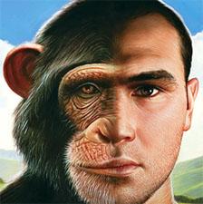 İnsan-Maymun İlişkisi