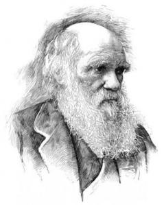 First Large-Scale Formal Quantitative Test Confirms Darwin's Theory of Universal Common Ancestry