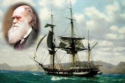 Evrim Kuramı'nın Doğuşu: Darwin'in Beagle'la Yolculuğu