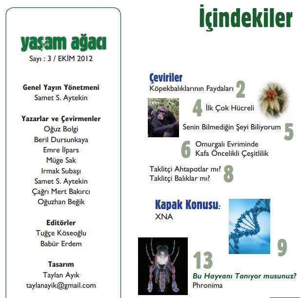 Yaşam Ağacı Dergisi Ekim 2012 (Sayı 3)