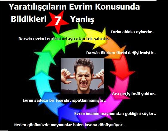Yaratiliscilarin Evrim Konusunda Bildikleri 7 Yanlis
