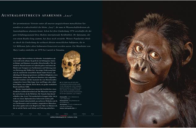die-evolution-des-menschen-12209