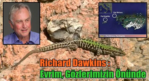 Video: Richard Dawkins Anlatıyor - 'Evrim, Gözlerimizin Önünde'