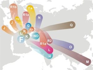Haplogroup_F_(Y-DNA)