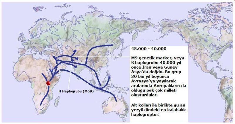 Y-Map.4