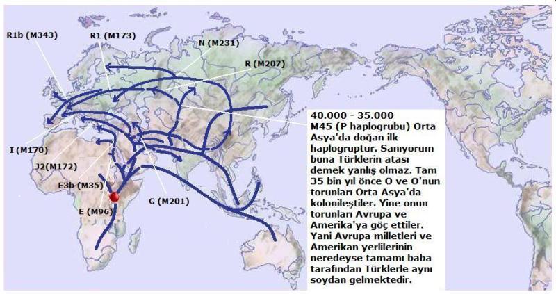 Y-Map.5