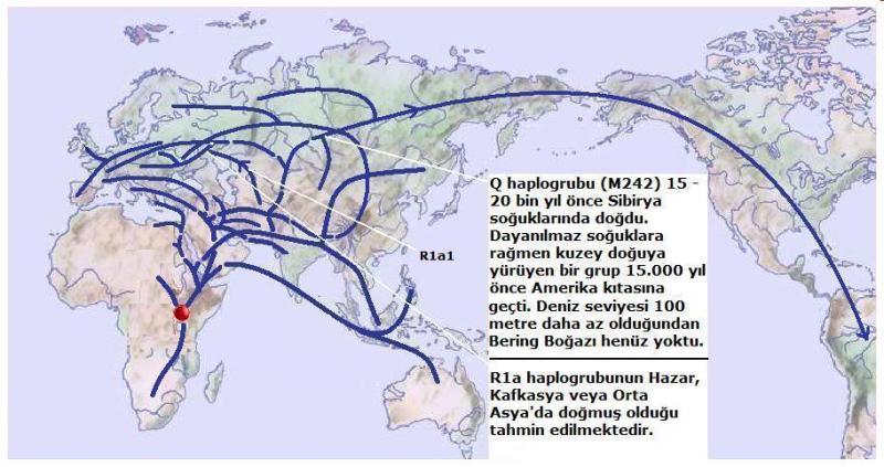 Y-Map.6