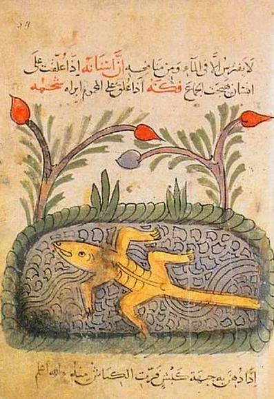 Evrim Düşüncesine İnandıkları İçin Bugün  Sakıncalı Piyade  Muamelesi Gören 16 İslam Bilgini   onedio.com