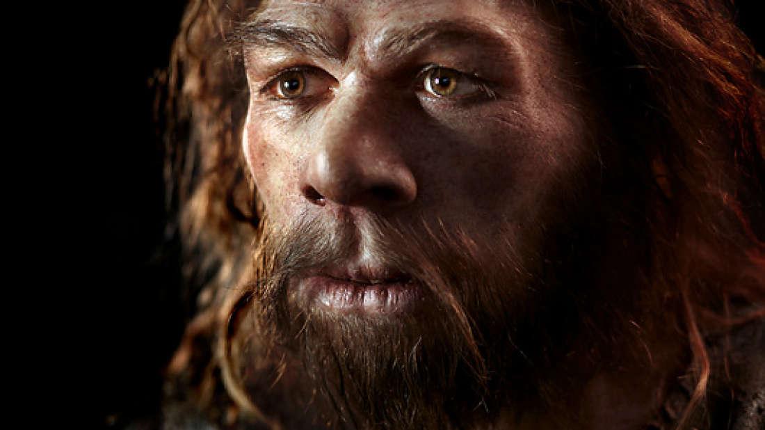 Сильвия неандерталь фото девушки